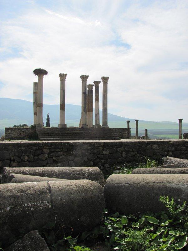 Ruined Volubilis