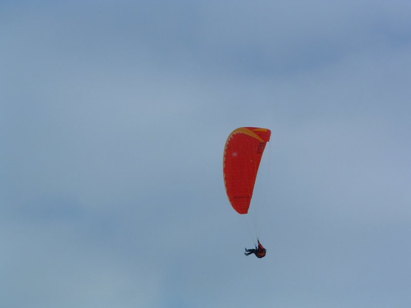 Parachutist in the Alpes