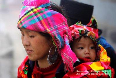the hmong