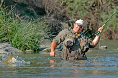 Fly fishing for yellow South Africa