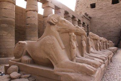 110402_Sphinxes2.jpg