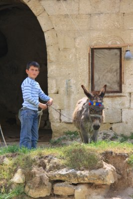 110501_Donkey.jpg