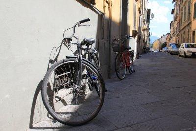 110615_Lucca3.jpg