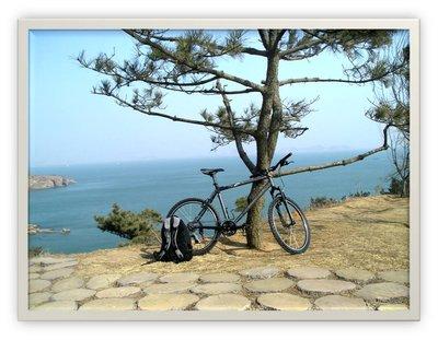 bikebike.jpg