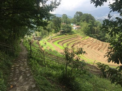 Sikkim_2017-05-29 13.45.08