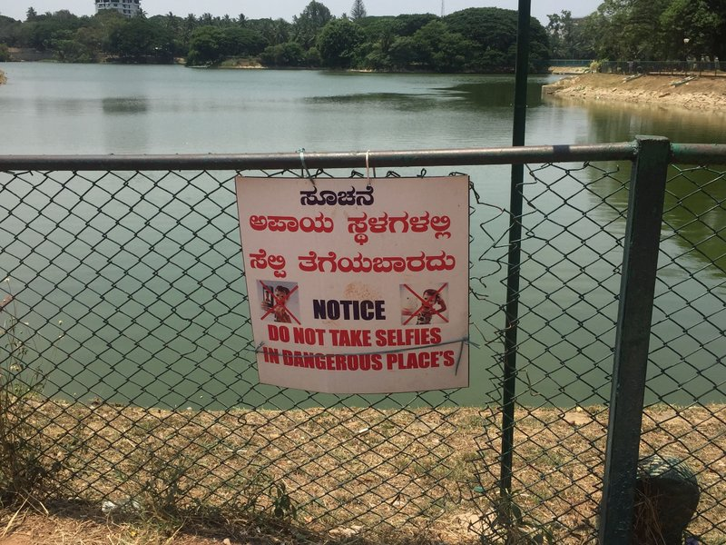 Bangalore_9816