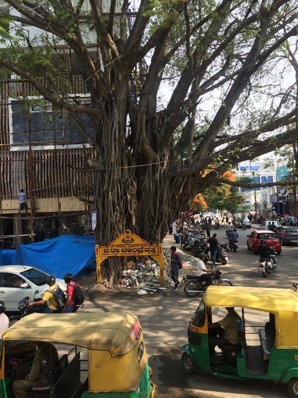 Bangalore_9820