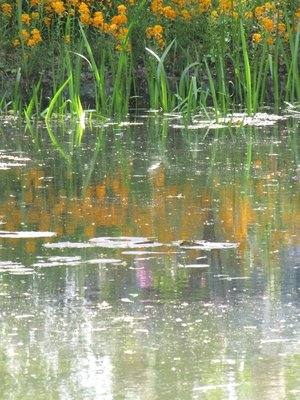 Monet4.jpg