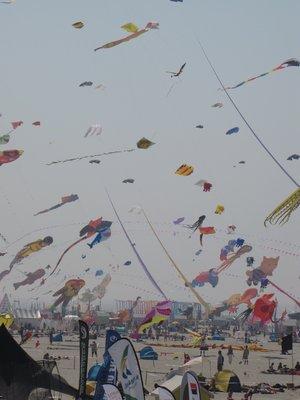 kites1.jpg