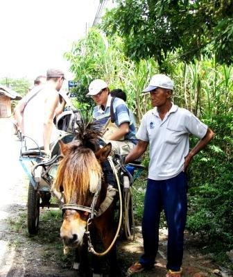 horse_cart_2.jpg