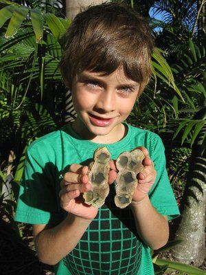 Michael with thunder eggs, rocks formed from volcanoes