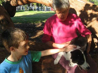 Sasha the puppy gets a pat from Michael at a park in Elsternwick