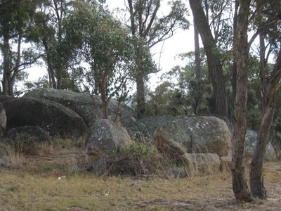 Granite boulders in Stanthorpe. One of these must be it.