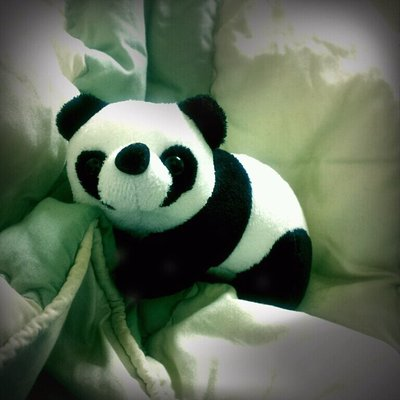 Panda_from_China_Town.jpg