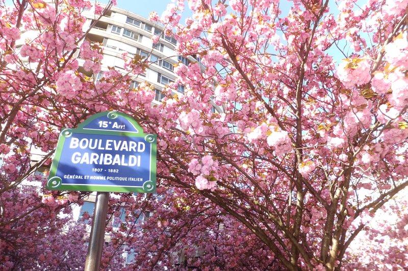 large_Boulevard_Garibaldi.jpg