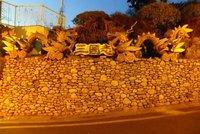 1chinatown_wall.jpg