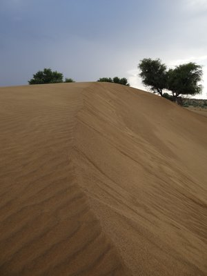 Woestijn nabij Jaisalmer!
