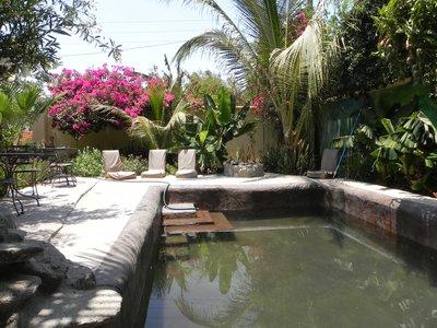 Tropical pool area at Raices y Brazos