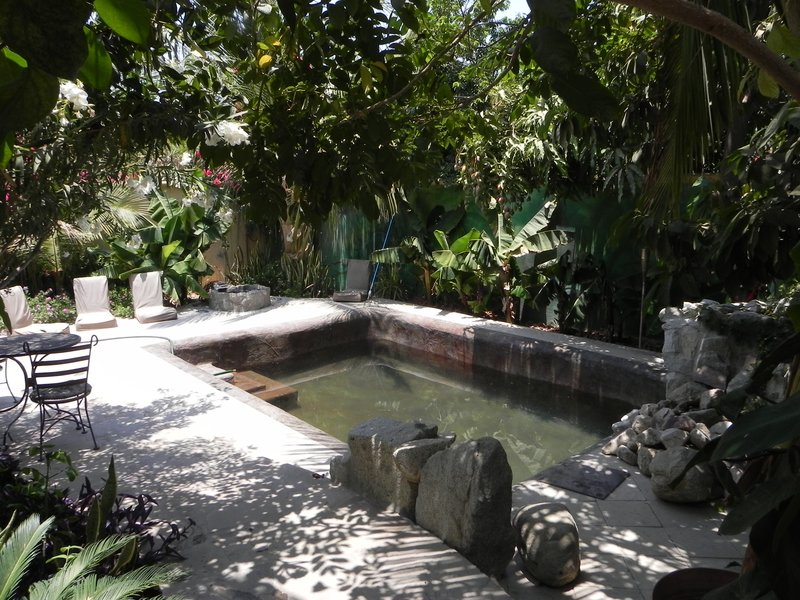 Saline pool, Raices y Brazos