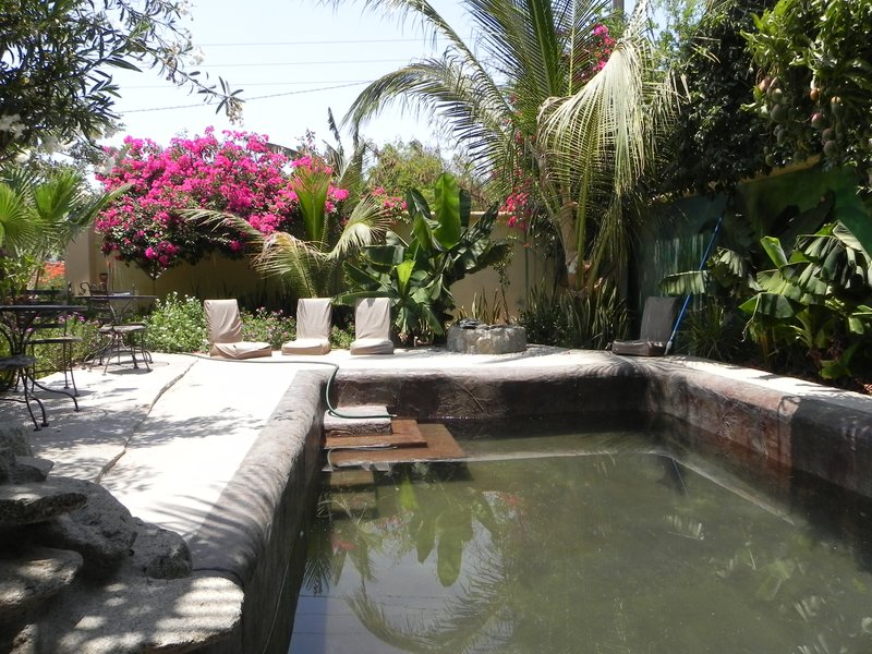 Tropical pool area at Raices y Brazos