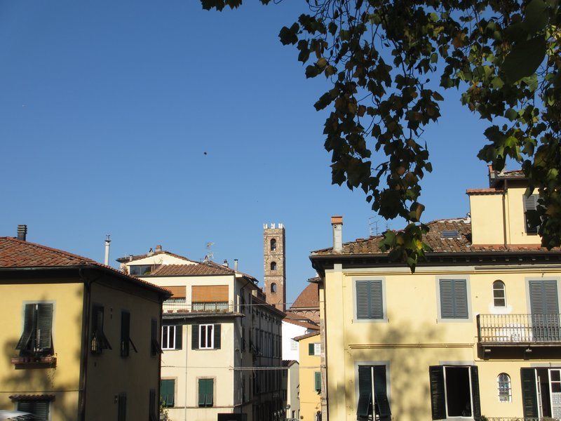 Peaceful Lucca view