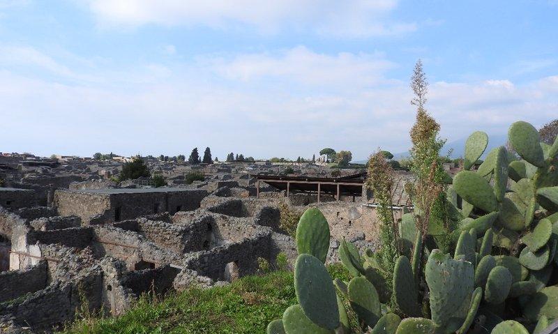 Pompeii laid out