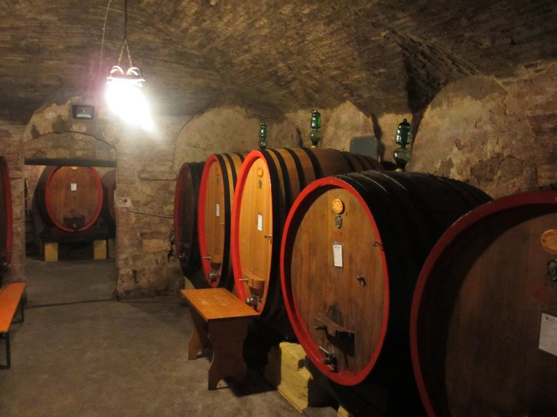 Inside cellar at Cantina Crociani