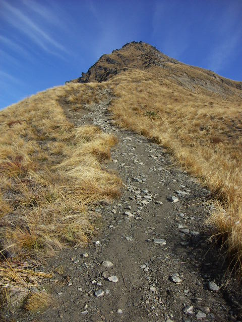 Start of the route to the top, Ben Lomond, NZ