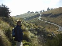 The long and winding path - Christchurch volcano