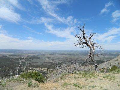 mesa verde national park: natuuuuur