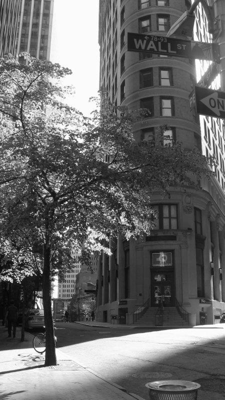 large_NYC_177.jpg