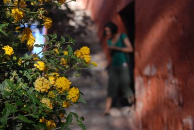 Arequipa - Monasterio De Santa Catalina (5)