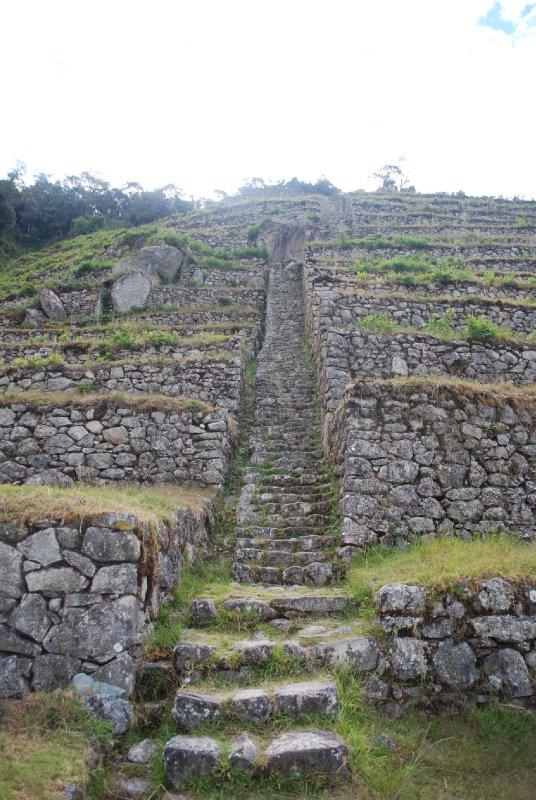 Old terrace ruins near Winay Wayna