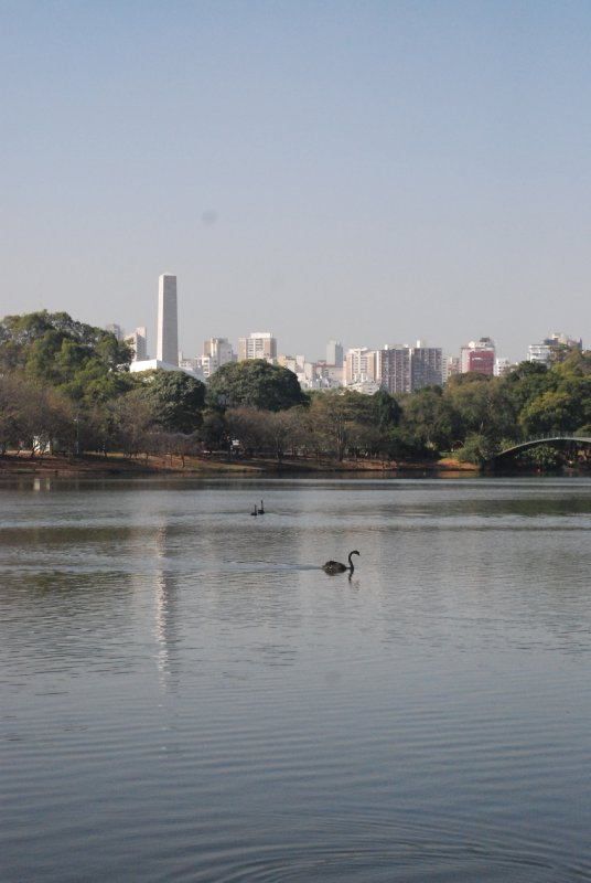 Sao Paulo - Ibirapuera Park (4)