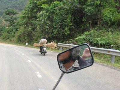 Transport de cannes a sucre