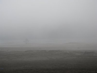 Le brouillard dans le desert