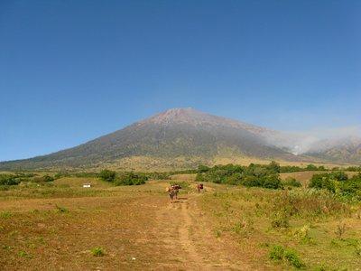 Le chemin vers Gunung Rinjani
