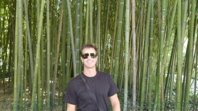 Bamboo Forest, Botanical Garden of Montpellier