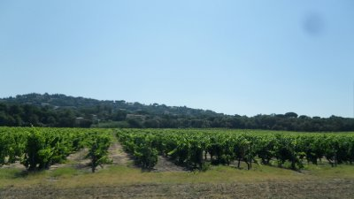 Provence Wineries & Vineyards