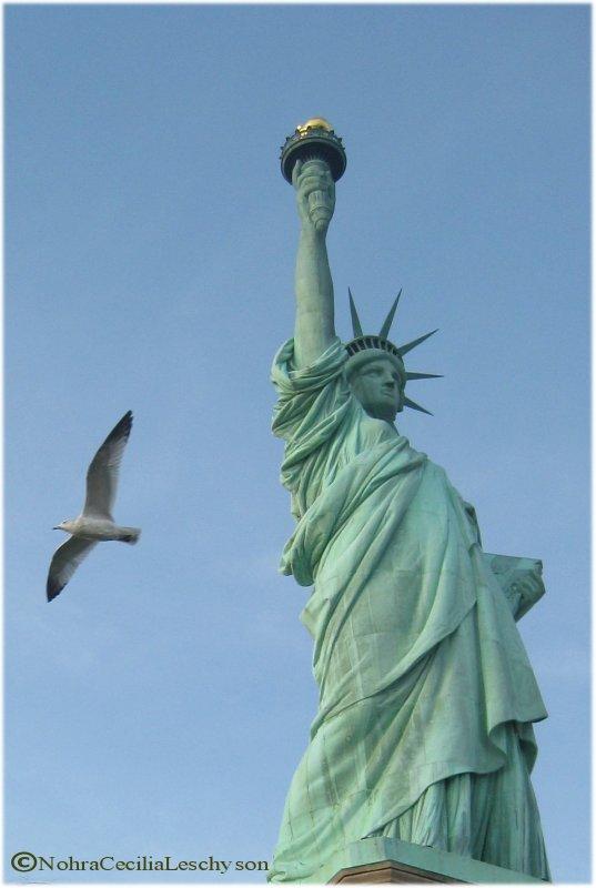 FREEDOM! Libertad!