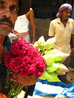 flower man ..
