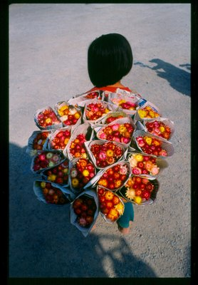 ...flower ...on sale ..no discount ..