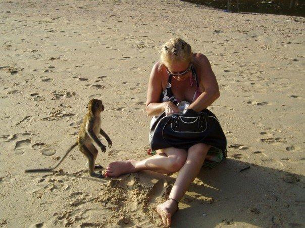 Aggressive monkey