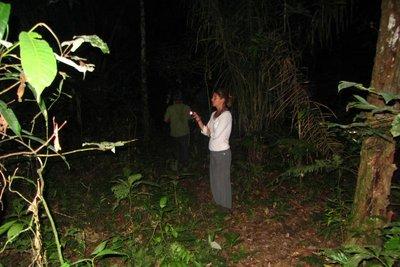Nachtwandeling in de jungle