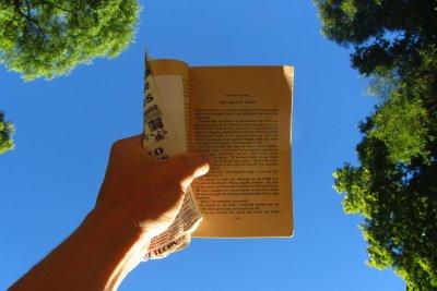 Boekje lezen in het park