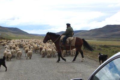 Van Ushuaia naar Puerto Natales