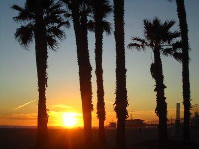 i'll miss california, sigh