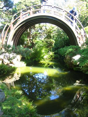 crazy tall bridge in japanese garden at golden gate park