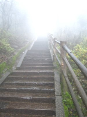 into the fog we marched, up a gazillion steps