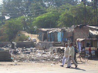Trash in Agra